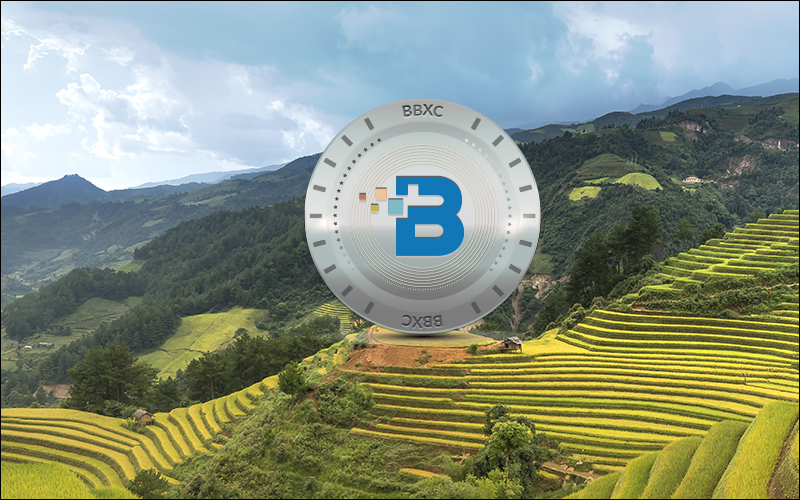 Bluebelt, Officially Listed it's Native Utility Token, BBXC!